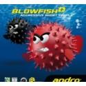 Andro Blowfish plus sendvič